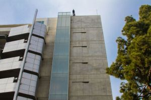 """Amelia Rudolph in """"Man Walking Down the Side of a Building."""""""